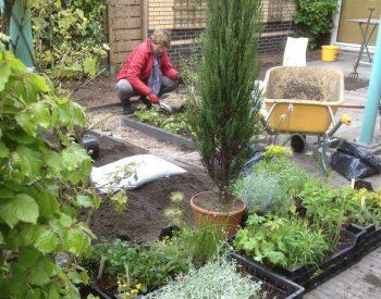 afbeelding Inplanten van klimaatbestendige tuin