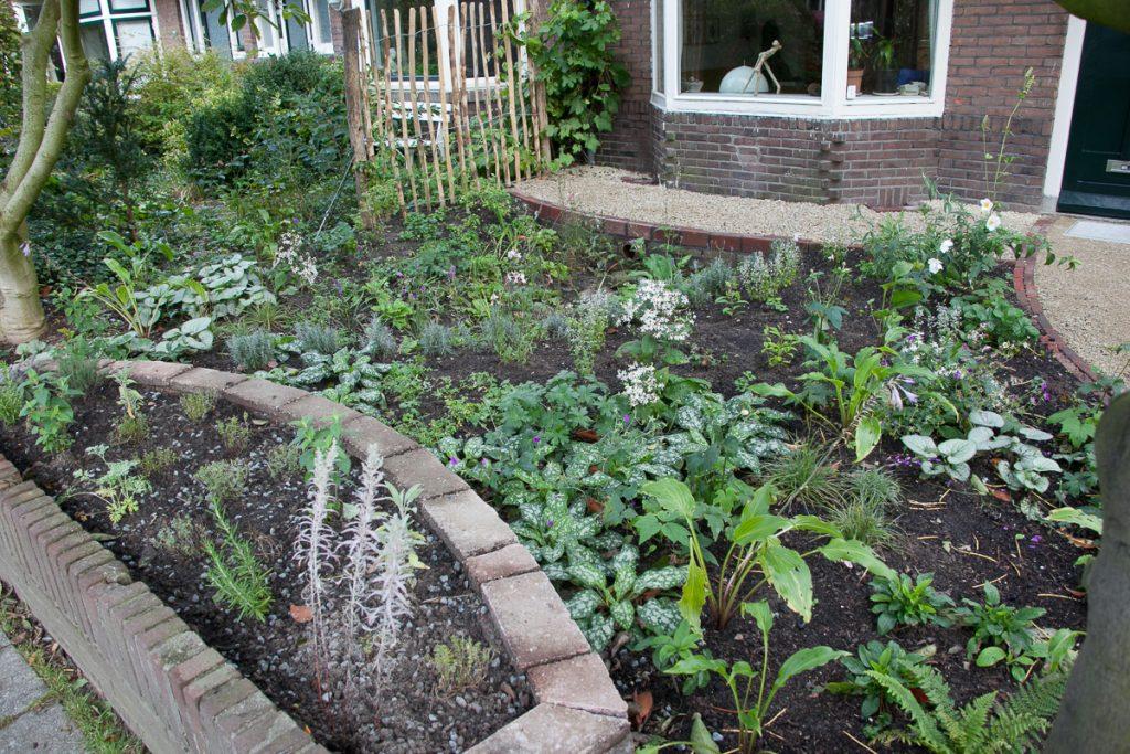 Voorbeeldtuinen Kleine Tuin : Klimaatvriendelijke voorbeeldtuin breitnerstraat lekker in je tuin