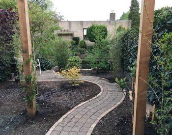 aanplant eerste planten waaronder een kiwibes, acer, bamboe, fluweelhortensia en ginkgoboom