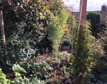 aanpassing beplanting in vroege herfst