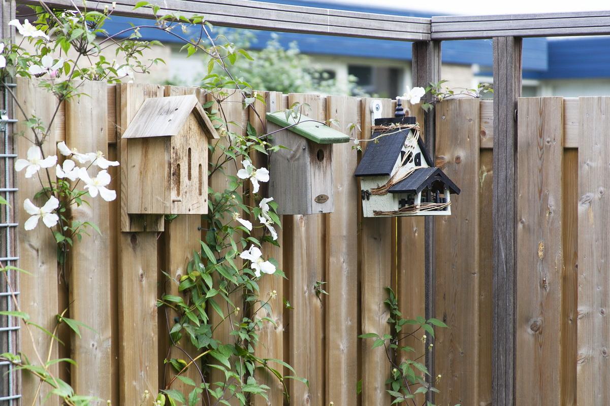 Vogelhuisjes aan houten schutting in Schuilenburg Amersfoort